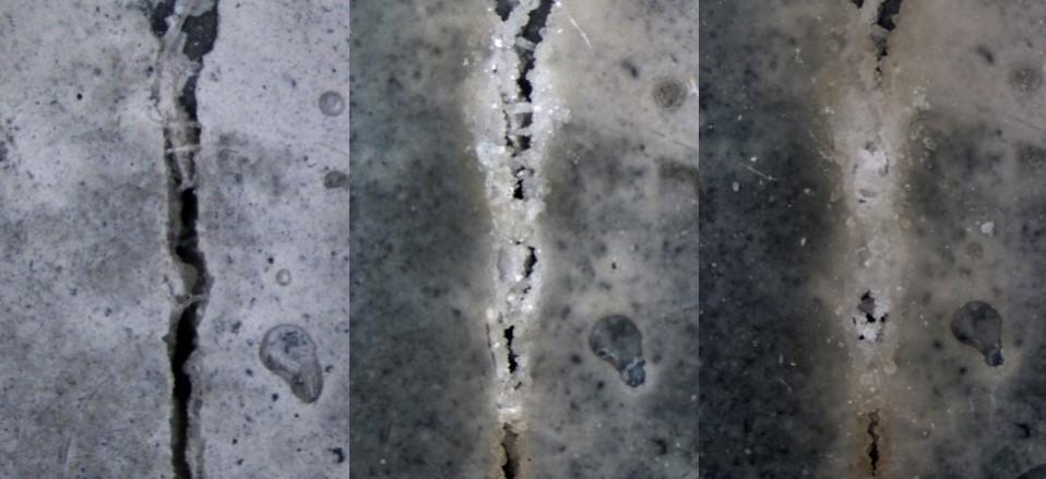 Regeneração do Bio-concreto