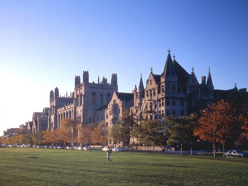 D'Angelo Law Library - Arquitetura neogótica da Universidade de Chicago