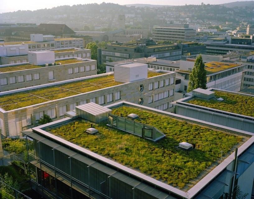 Soluções sustentáveis para as áreas da laje